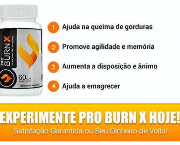 pro burn x
