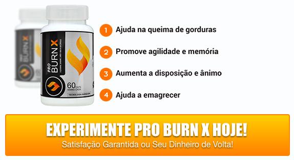 Pro Burn X: O que é, como funciona?